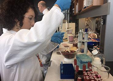 Chaire de recherche industrielle du CRSNG-Diana Food